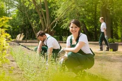Garten-Landschaftspflege-Hannover-Jobs-Monopolo-Services